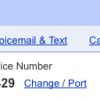 Now port and use existing mobile number as Google Voice number