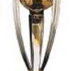 """""""World Cup Cricket"""" -Best Moments"""