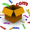 Why Choosing Right Domain Name For Your Startups Is Important?