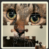 Read Secret Messages Through Puzzle Via Puxxles